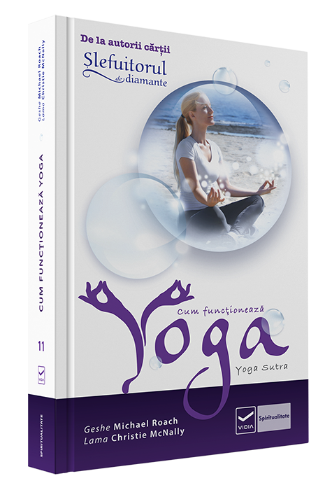 Slefuitorul De Diamante – Cum Functioneaza Yoga
